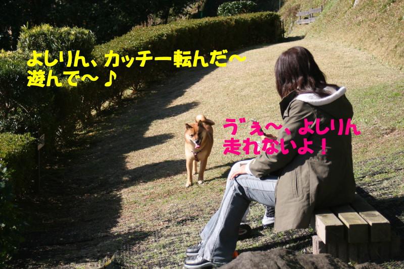 Img_02372_1
