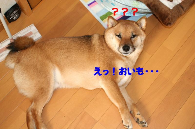 Img_00134_1_2