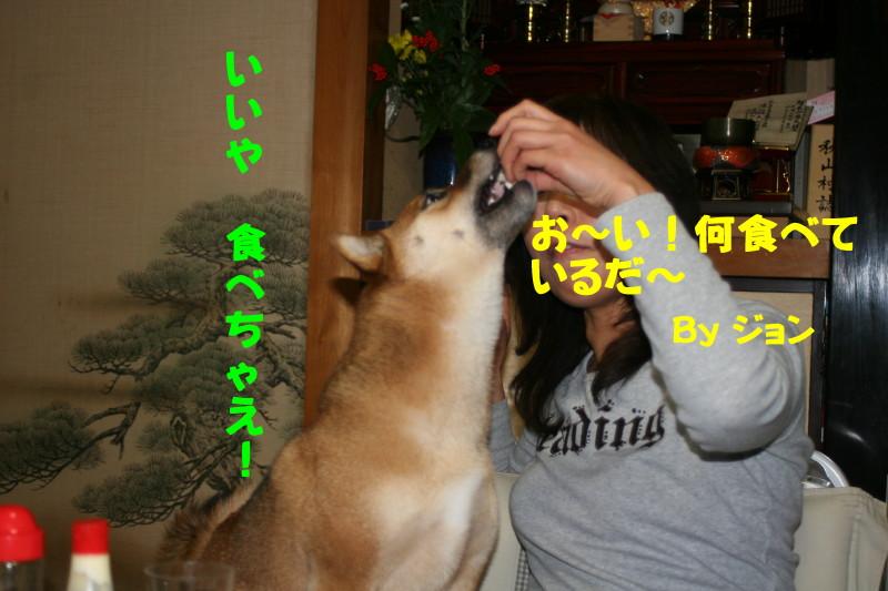 Img_00336_1