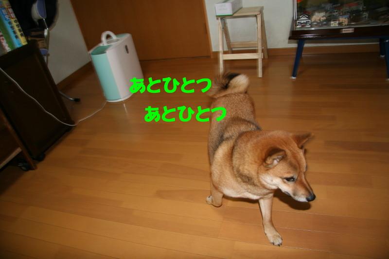 Img_00241_1