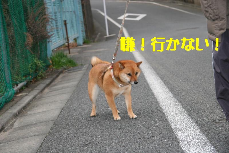 Img_0047_1