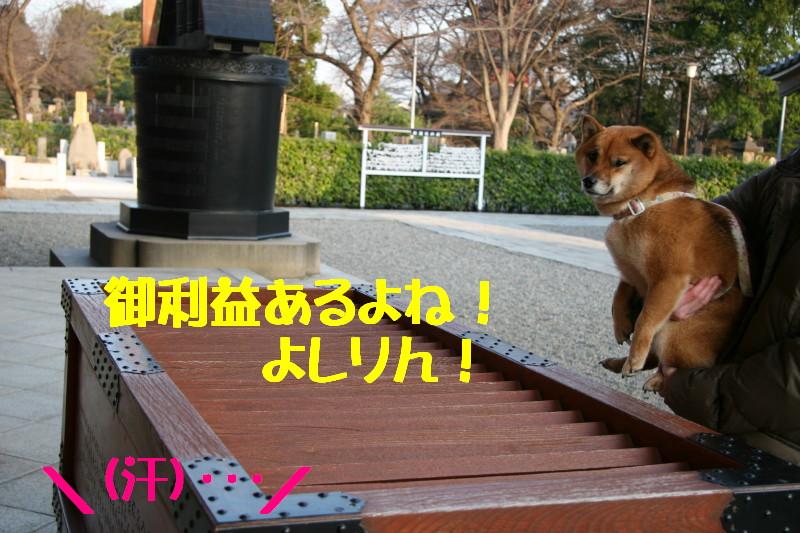 Img_0081_1
