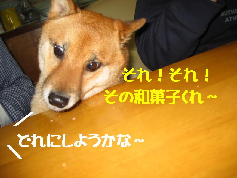 Img_0961_1_2