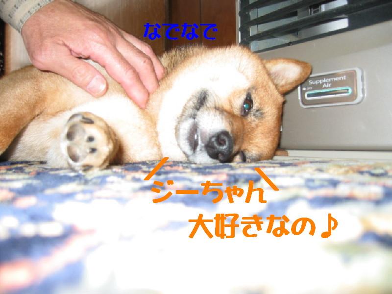Img_0984_1
