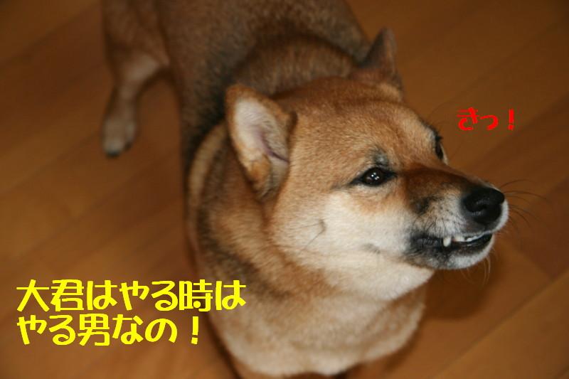 Img_0034_1