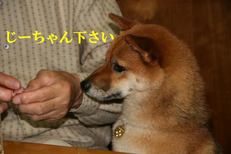 Img_0096_1
