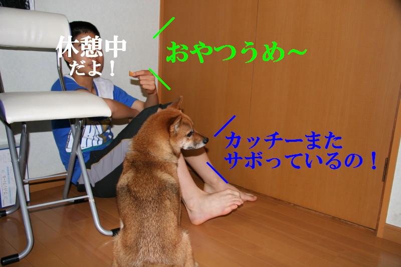 Img_0044_1_2