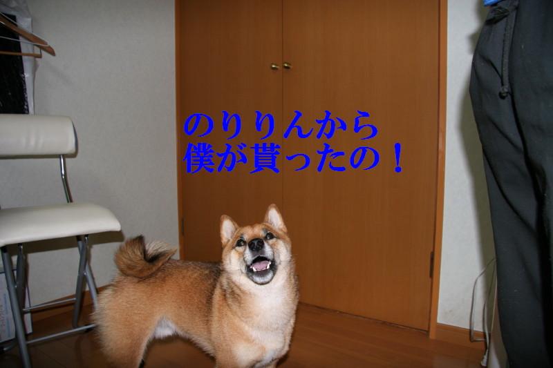 Img_0045_1_3
