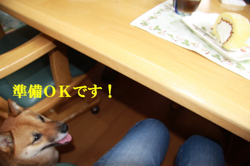 Img_0342_1