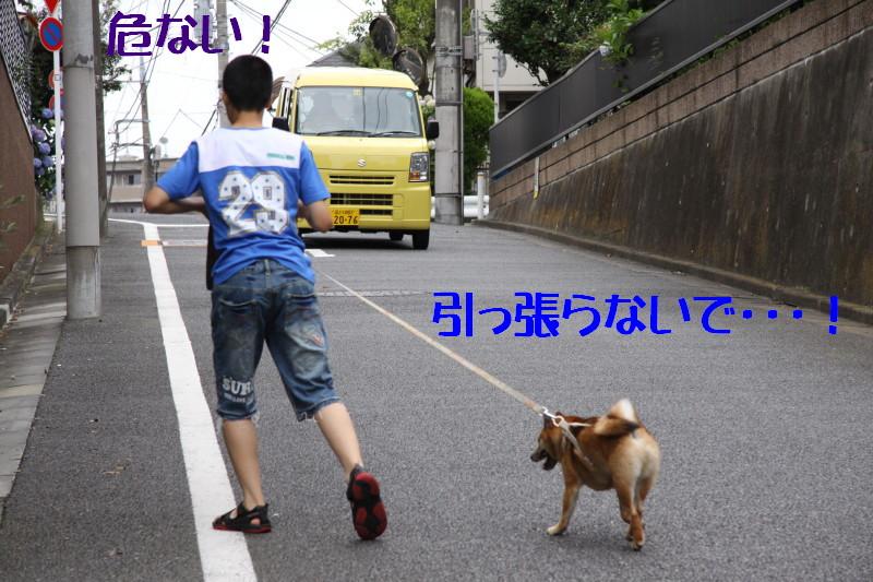 Img_0753_1
