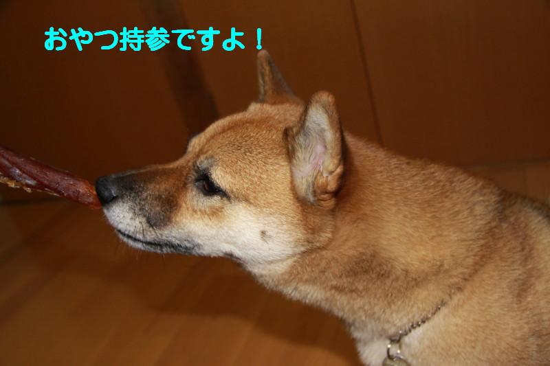 Img_0016_1