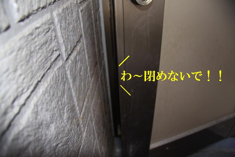 Img_0043_1