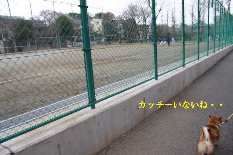 Img_0051_1