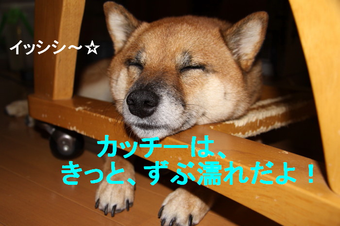 Img_0073_1