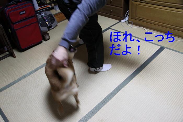Img_0048_1