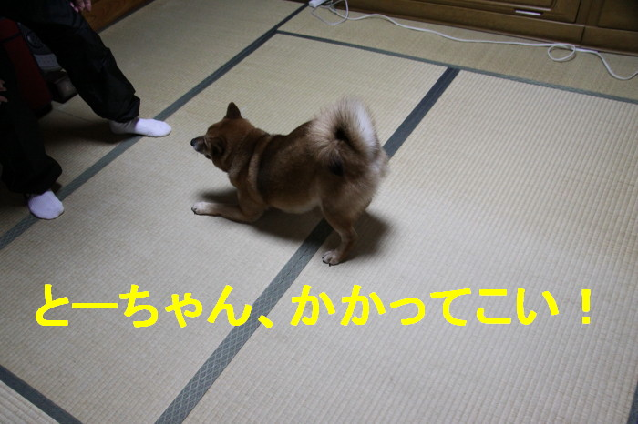 Img_0060_1_2