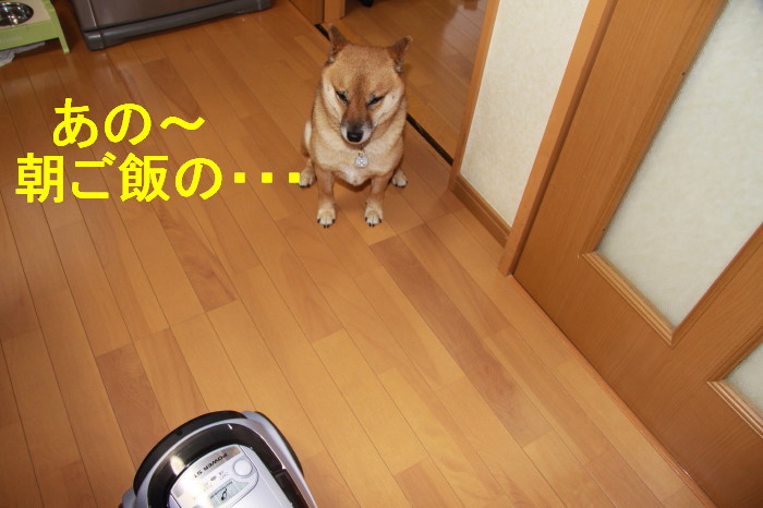Img_0014_1