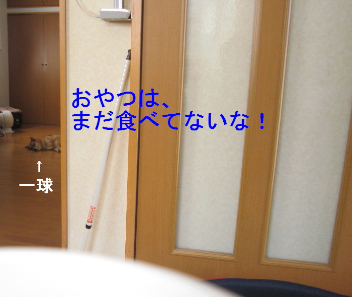 Img_5804_1