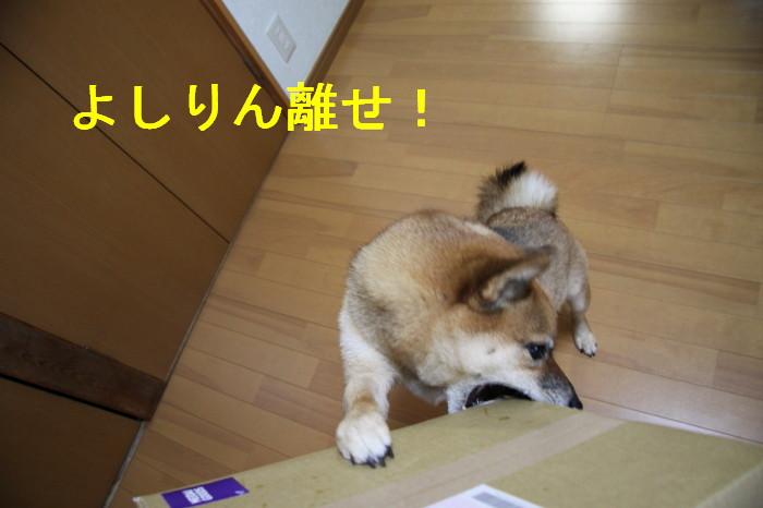 Img_0014_1_2