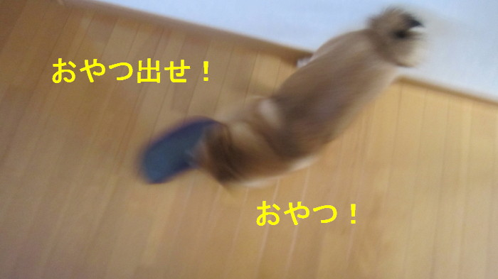 Img_6760_2