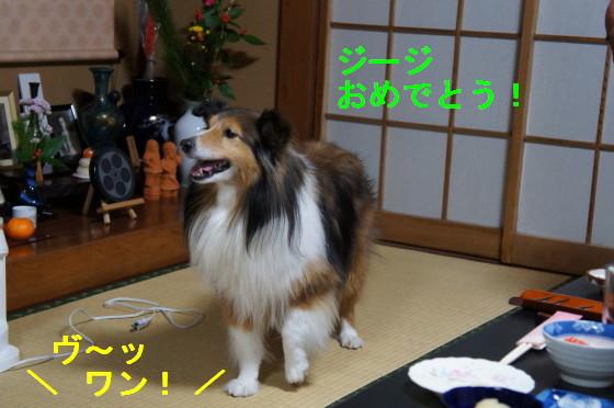 Dsc00266_2