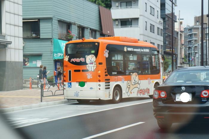 Dsc04953
